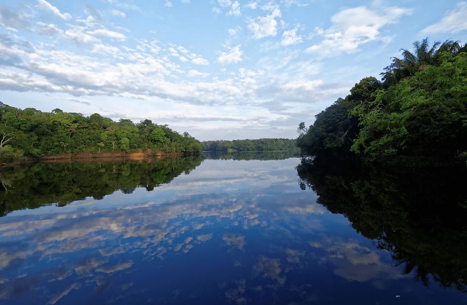 amazonie-brésilienne