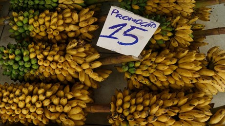 banane-marché-adolpho-lisboa