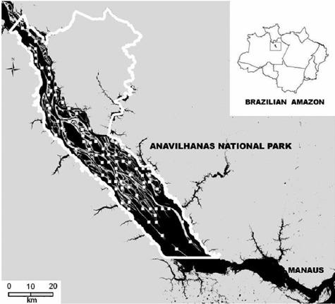 archipel-anavilhanas-carte