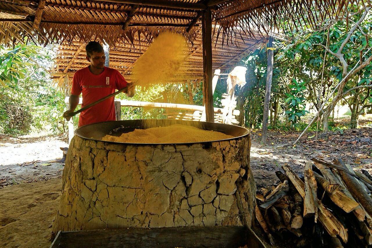 transformation-manioc-amazonie