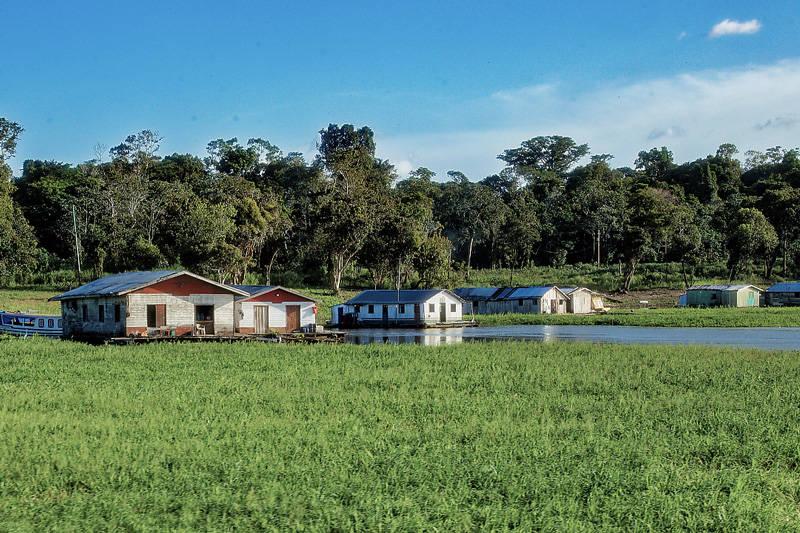 les habitations qui longent les rives du fleuve en amazonie