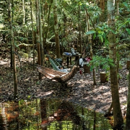 Une belle expérience en Amazonie