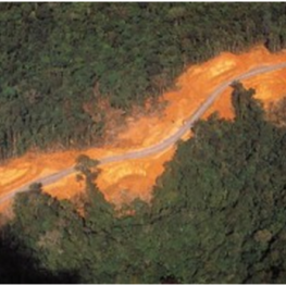 sols-rouges-amazonie