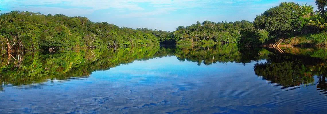 vue du rio negro en Amazonie